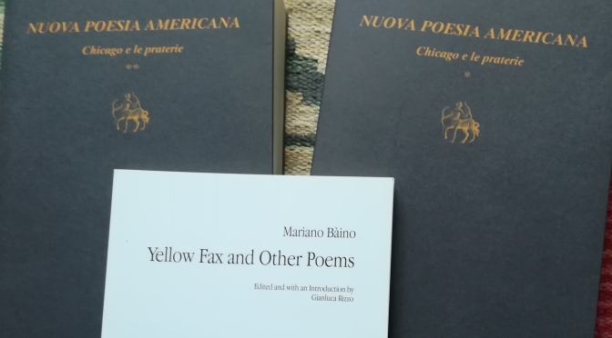 Import-export poesia