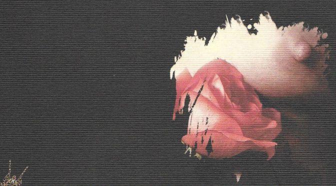 Lubrano: poesia e eros